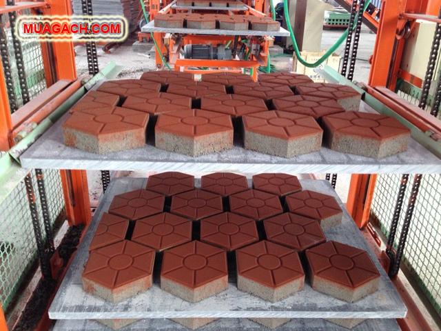 Xưởng sản xuất gạch lục giác - gạch bê tông tự chèn, gạch block tự chèn